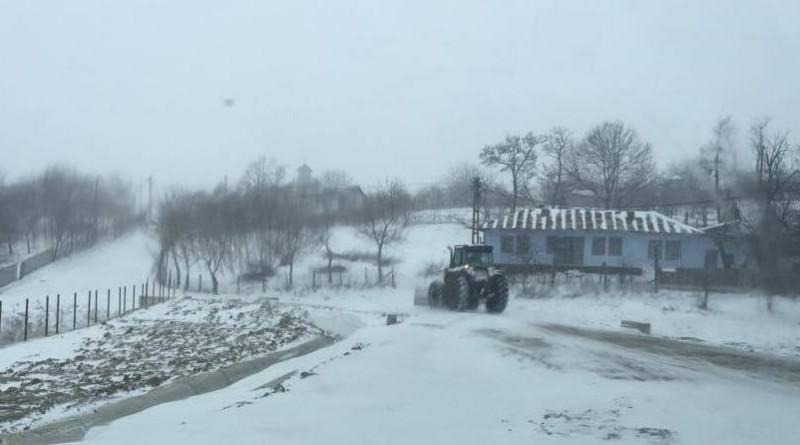 iarna suletea(1)