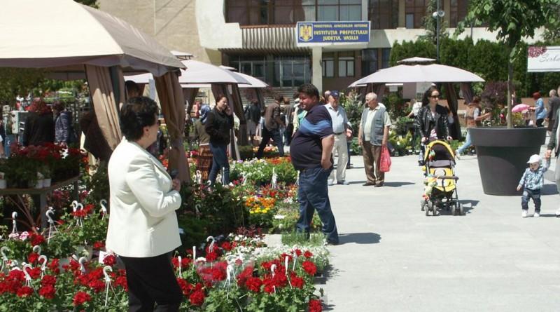 Serbarea florilor mai