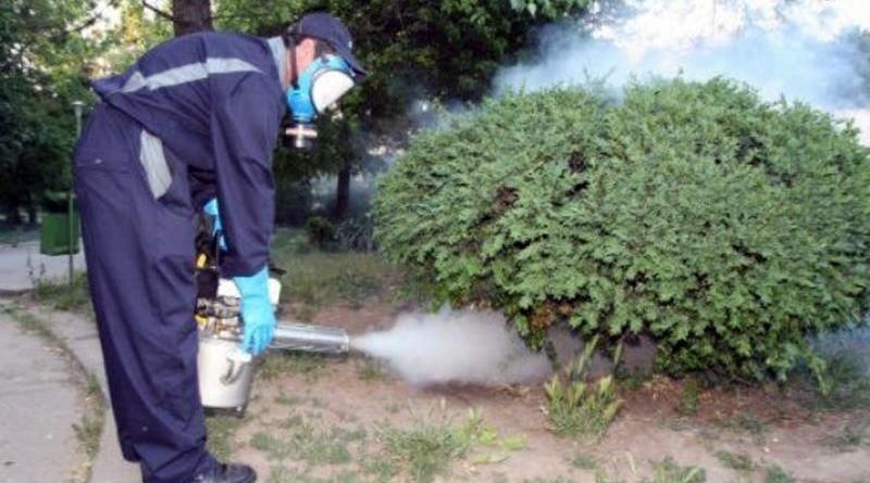 Crescători de albine, atenție! Încep lucrările de combatere a țânțarilor!