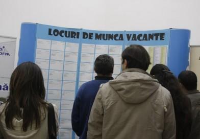 Locuri de muncă disponibile în județ