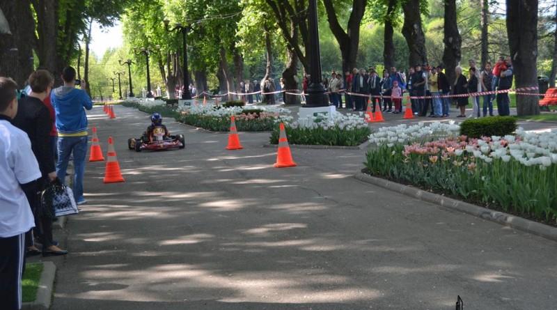 cosmin-darescu-cart
