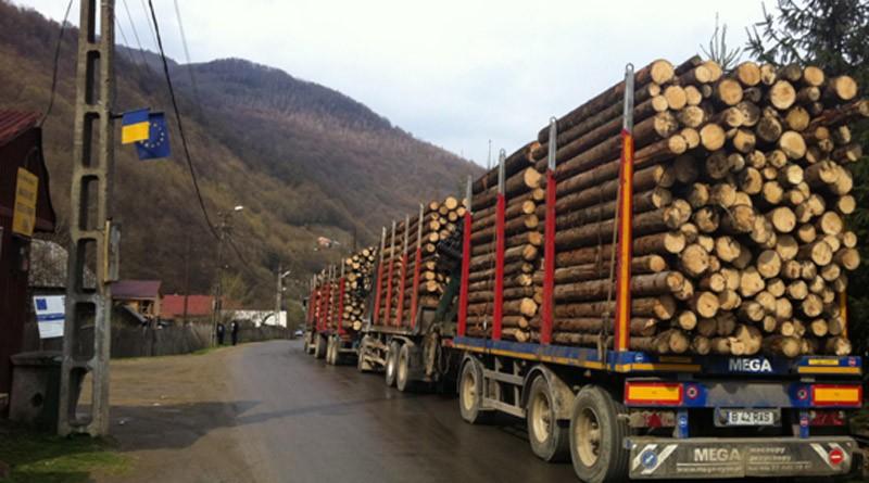 tir-lemn