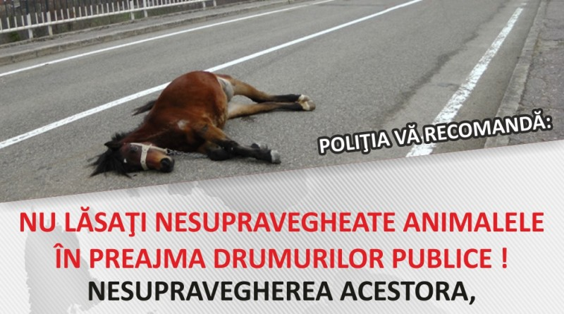 afis-informare-proprietari-animale_