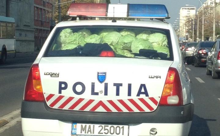 politia-varza