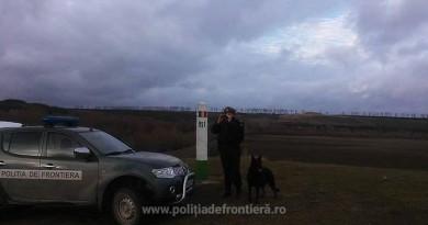 ruv-politist-caine