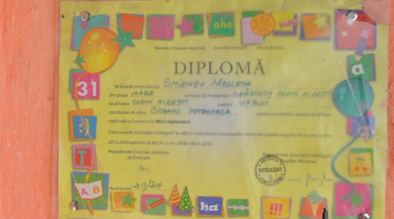 diploma1-copy