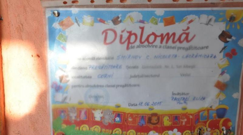 diploma5-copy