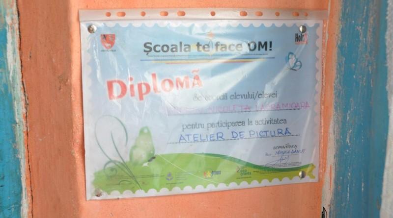 diploma8-copy
