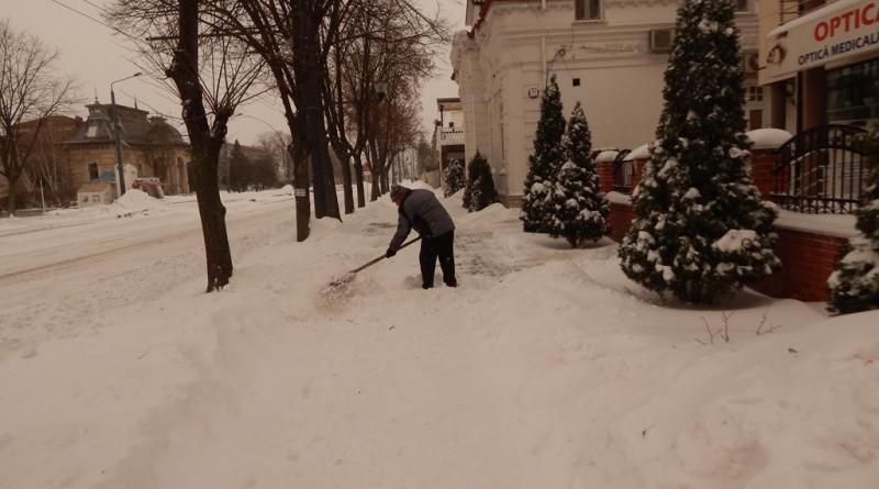 iarna-14