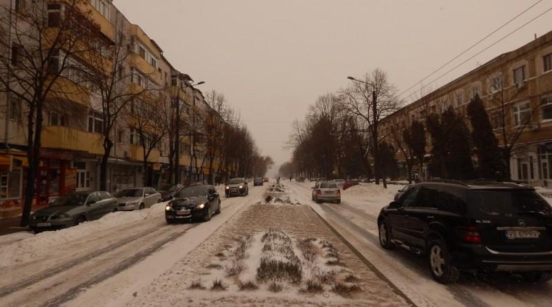 iarna-24