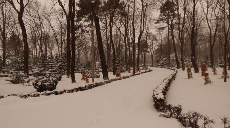 iarna-copou-11