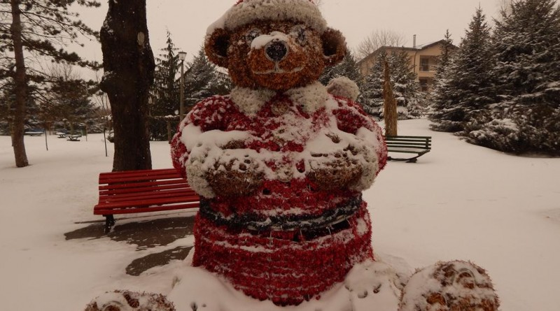iarna-copou5