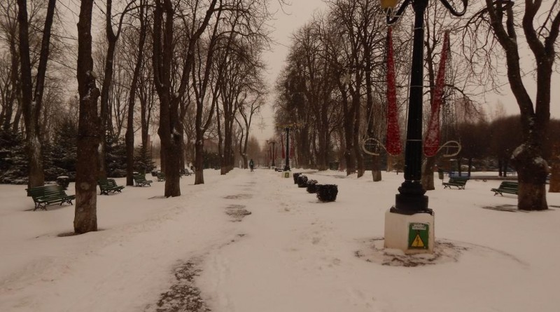 iarna-copou6
