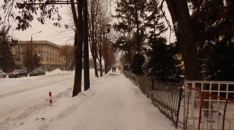 iarna11