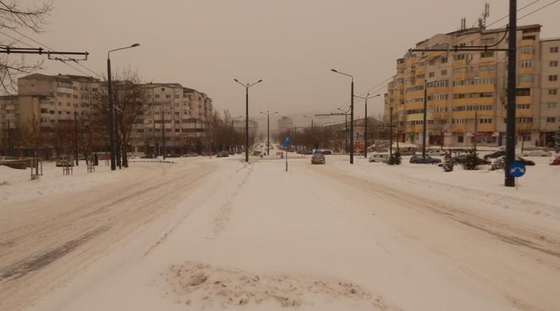 iarna17