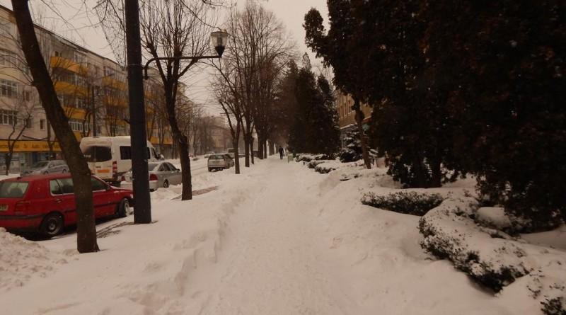 iarna28
