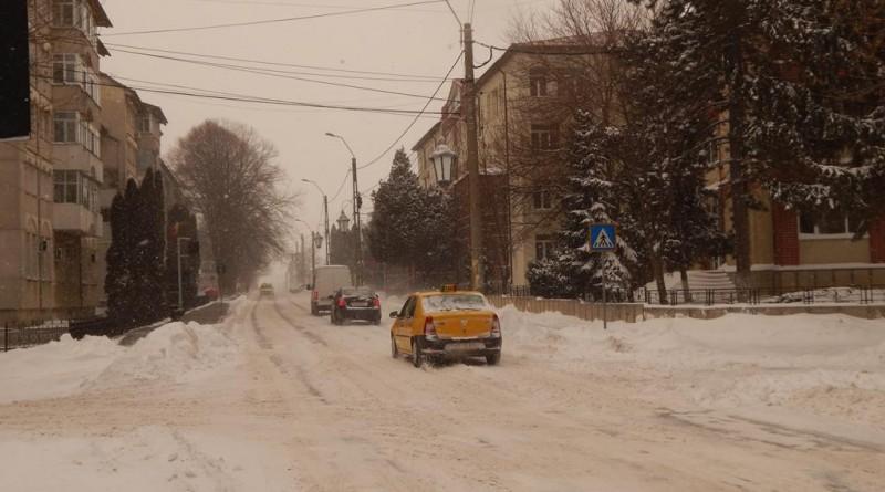 iarna33