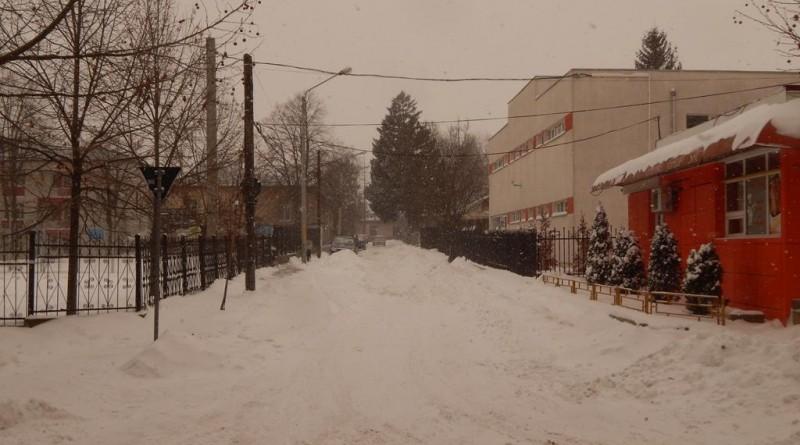 iarna34