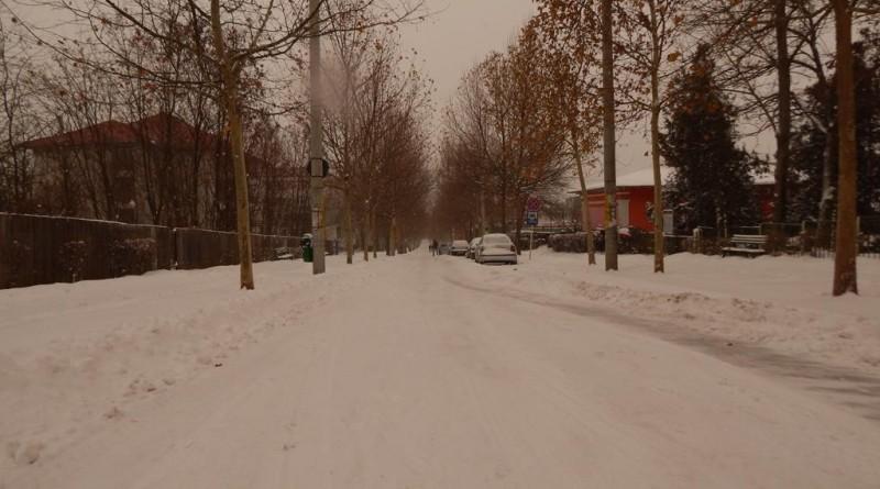 iarna35