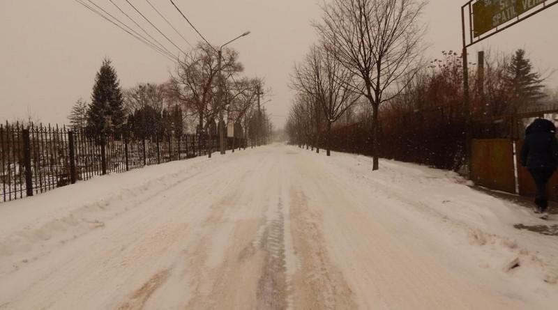 iarna37