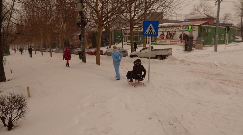 iarna41