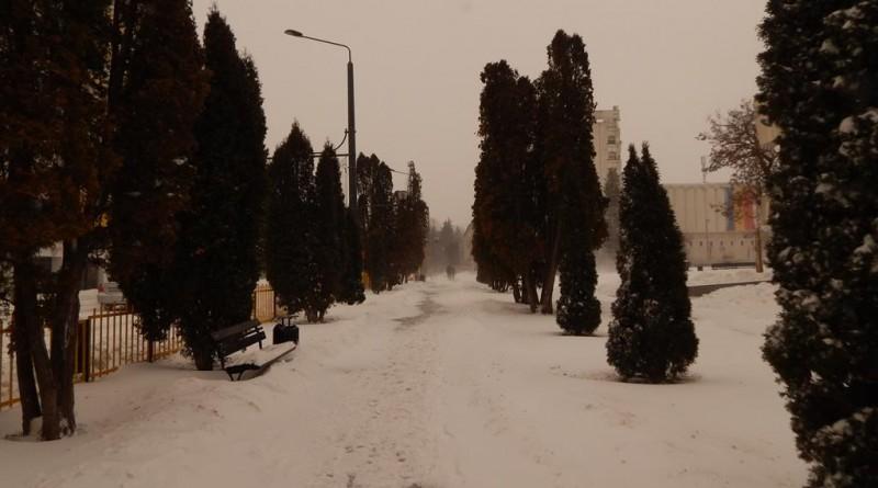 iarna8