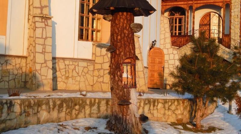 manastirea Bujoreni 5 (Copy)