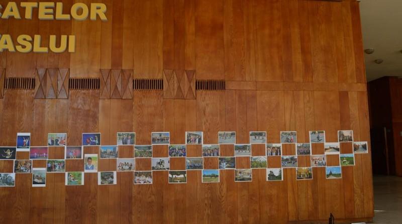 expozitie-zdv