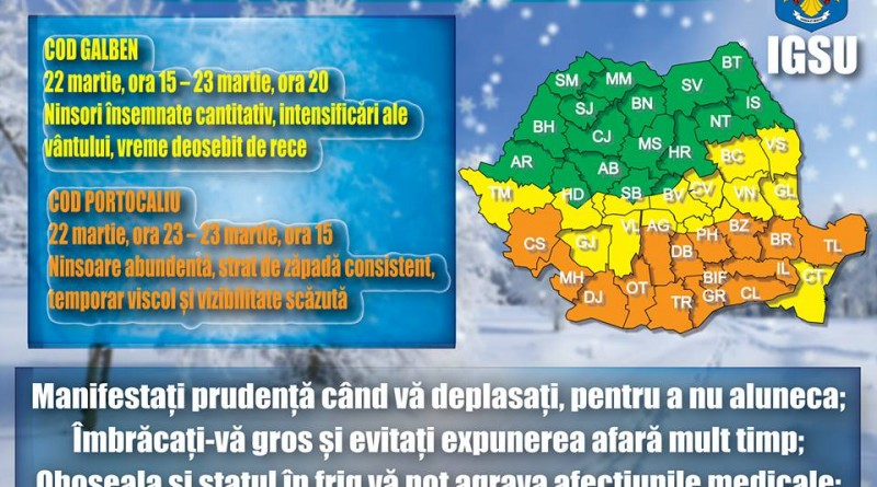 cod-galben-iarna
