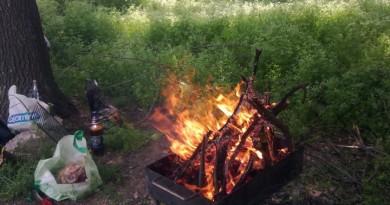 foc-padure