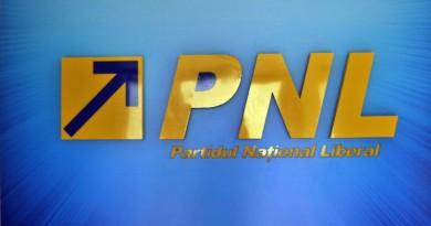 PNL-sigla-logo