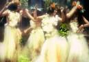 Tradiții și obiceiuri de SÂNZIENE